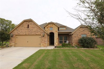 172 Whitetail Drive, Willow Park, TX 76008 - #: 13955668