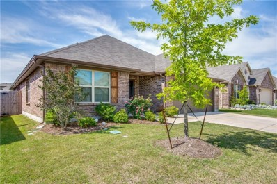 13117 Upland Meadow Court, Fort Worth, TX 76244 - #: 13958297