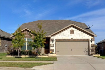 3113 Caribou Falls Court, Fort Worth, TX 76108 - #: 13971236