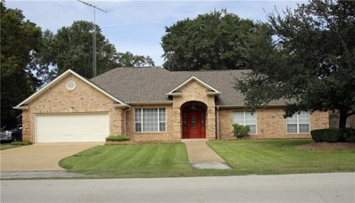 210 Lurline Street, Frankston, TX 75763 - #: 13971949