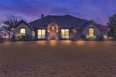 101 Birdie Drive, Lipan, TX 76462 - #: 13977526