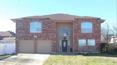 6809 Permian Lane, Fort Worth, TX 76137 - #: 13977785