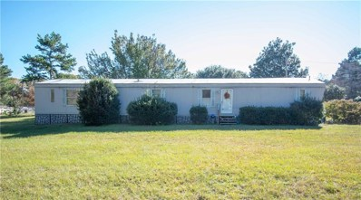 2480 County Road 3413, Chandler, TX 75758 - #: 13979946