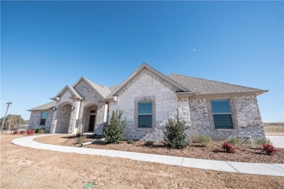 100 Hicks Lane, Weatherford, TX 76088 - #: 13981681