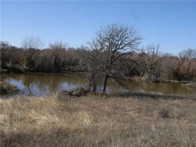 83 Ac Wright Road, Windthorst, TX 76389 - #: 13987221