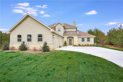 380 Pine Hills Lane, Gordonville, TX 76245 - #: 14006624
