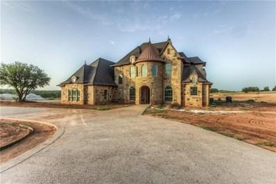 220 Reata Ranch Drive, Peaster, TX 76088 - #: 14007048