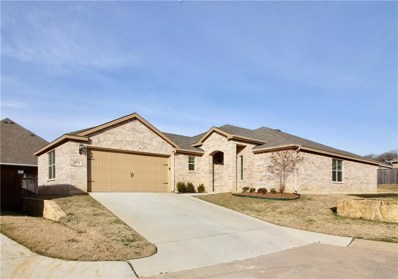 5101 Chatfield Place, Arlington, TX 76017 - #: 14013204