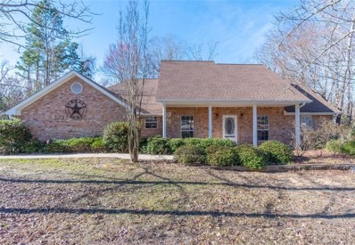 15843 County Road 4191, Lindale, TX 75771 - #: 14016617