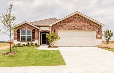 905 Memorial Drive, Little Elm, TX 76227 - #: 14038105