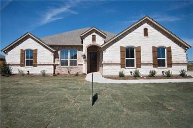 1110 Cliff Swallow Drive, Granbury, TX 76048 - #: 14046492