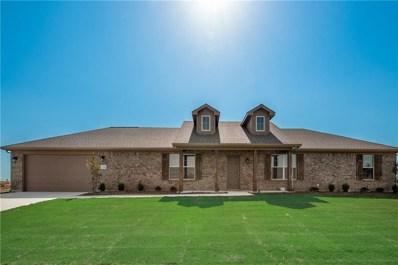 134 Hillcrest Lane, Decatur, TX 76234 - #: 14050222