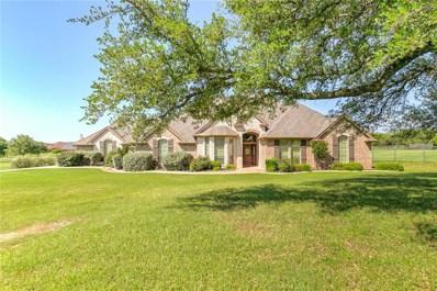 2306 E Emerald Bend Court, Granbury, TX 76049 - #: 14088959