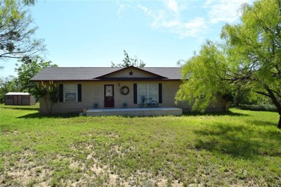 3501 Guadalupe, Coleman, TX 76834 - #: 14092047