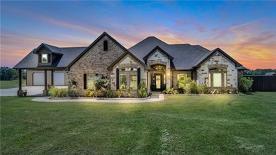 5495 Vz County Road 3415, Wills Point, TX 75169 - #: 14093773