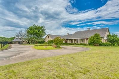 443 Bluff Ridge Road, Weatherford, TX 76087 - #: 14111800