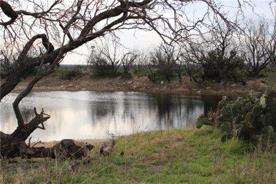 1725 Bison Road, Eden, TX 76837 - #: 14112930