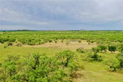 680 Cox Mountain Road, Graham, TX 76450 - #: 14113066