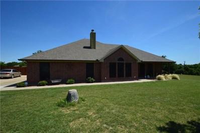118 Colonial Creek Lane, Weatherford, TX 76088 - #: 14115279