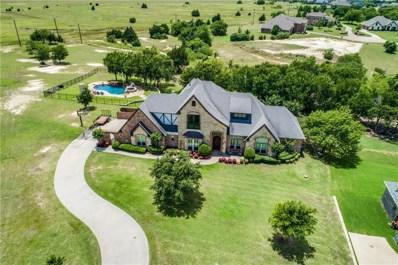 96 Eagle Point Drive, Waxahachie, TX 75165 - #: 14118739