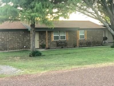 247 County Road 3695, Springtown, TX 76082 - #: 14125570