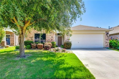 328 Chinaberry Lane, Fate, TX 75087 - #: 14137239