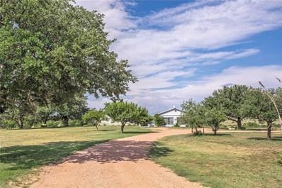 90 Private Road 563, Brady, TX 76825 - #: 14140185
