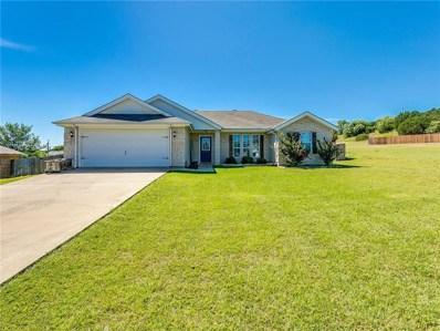 1307 Shawnee Trail, Granbury, TX 76048 - #: 14142761