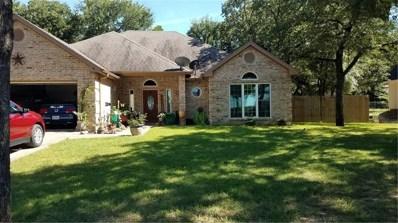 1022 Shady Oaks Court, Bridgeport, TX 76426 - #: 14144810