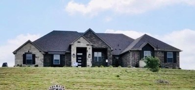 106 Hicks Lane, Weatherford, TX 76088 - #: 14146497