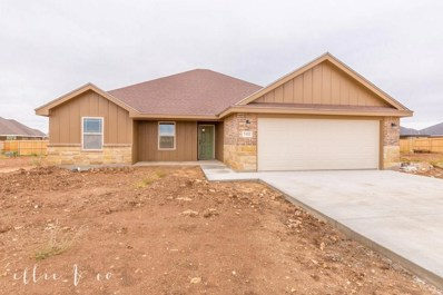 7432 Morning Glory Road, Abilene, TX 79602 - #: 14154134