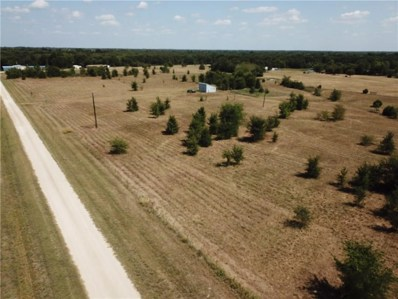 9999 Rs County Road 1403, Point, TX 75472 - #: 14154563