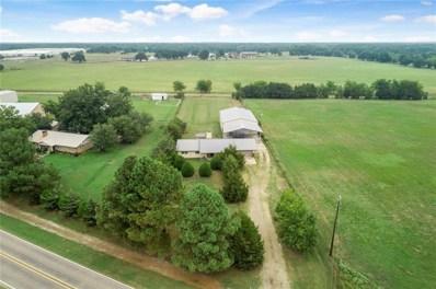 1536 Farm Road 2352, Sumner, TX 75486 - #: 14157979