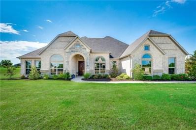 335 Hunter Pass, Waxahachie, TX 75165 - #: 14161575