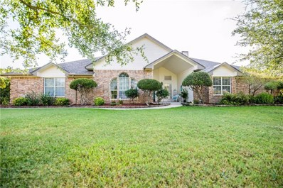 124 Vintage Drive, Waxahachie, TX 75165 - #: 14164334