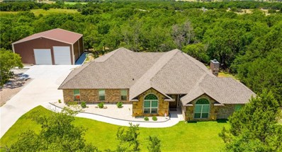 117 Woody Williams Court, Weatherford, TX 76088 - #: 14165339