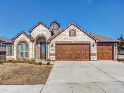1107 Nighthawk Drive, Wylie, TX 75098 - #: 14170776