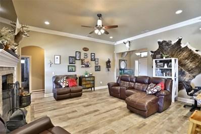 5041 Velta Lane, Abilene, TX 79606 - #: 14182977