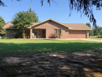 436 County Road 2035, Ivanhoe, TX 75447 - #: 14188113