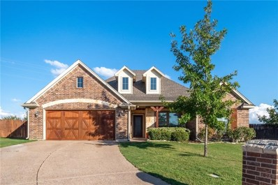 165 Winged Foot Drive, Willow Park, TX 76008 - #: 14188948