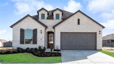 1112 Knoll Street, Little Elm, TX 76227 - #: 14193194