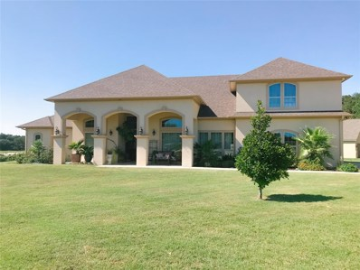 402 Cole Trail, Sulphur Springs, TX 75482 - #: 14193932