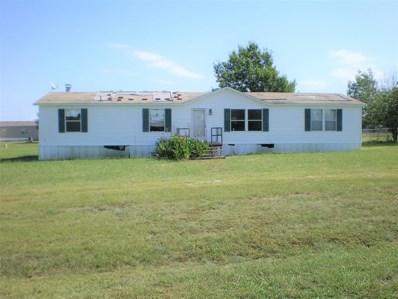 107 Willow Ridge Circle, Southmayd, TX 75092 - #: 14196039