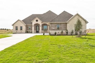 117 Gray Fox Court, Godley, TX 76044 - #: 14205177