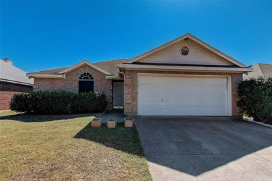 1704 Cedar Tree Drive, Fort Worth, TX 76131 - #: 14206154
