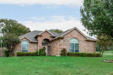 207 Lakeaire Drive, Joshua, TX 76058 - #: 14214698