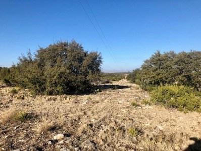 County Road 300, Eldorado, TX 76936 - #: 14220910