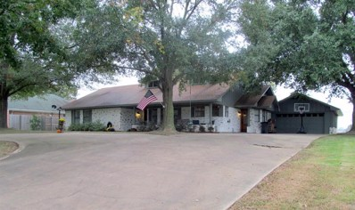 2013 Park Springs Road, Sulphur Springs, TX 75482 - #: 14221226