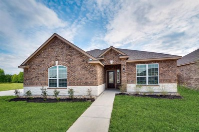 712 W Milas Lane, Glenn Heights, TX 75154 - #: 14222624