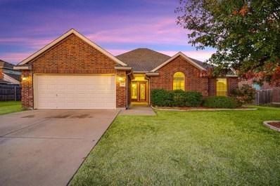 9105 Wild River Drive, Arlington, TX 76002 - #: 14227336